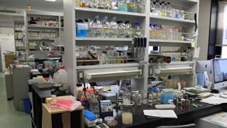 生物科学 研究室風景