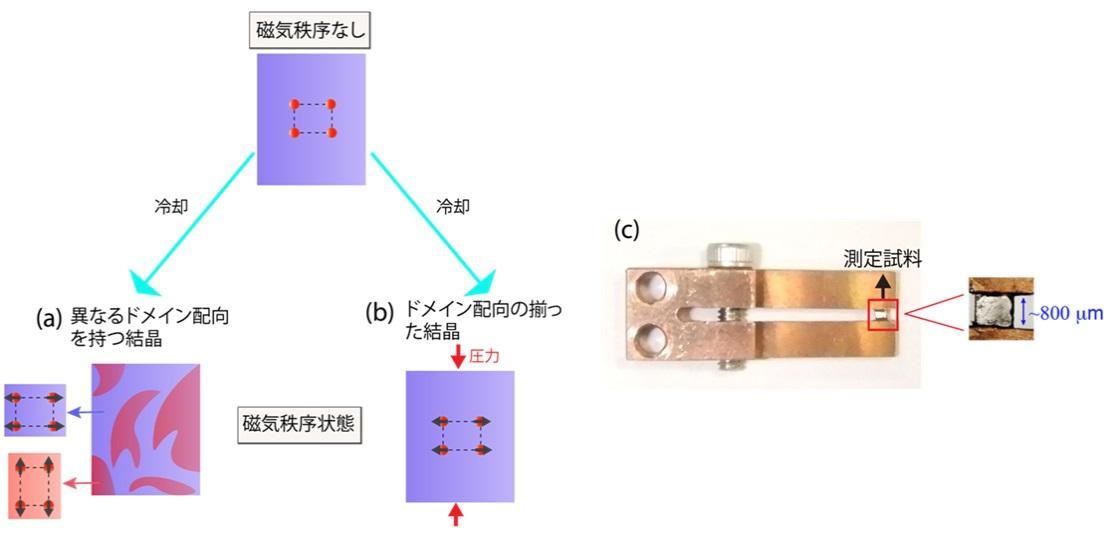 鉄系超伝導体のフォノンと磁性 -磁気秩序に伴うフォノンエネルギー分裂の観測に初めて成功- – 大阪大学 大学院理学研究科・理学部